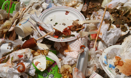 Food Waste preview image